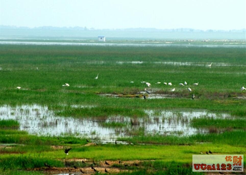 优地网:研究|国土空间规划背景下黄河重点生态区保护的发展思考